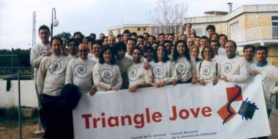 5. Triangle jove